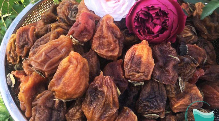 Máy sấy trái cây Hai Tấn – Công suất đa dạng, phù hợp nhiều sản phẩm