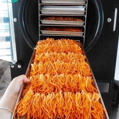 máy sấy thực phẩm nhỏ