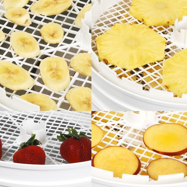 Máy sấy thực phẩm mini có thể sấy loại thực phẩm nào?