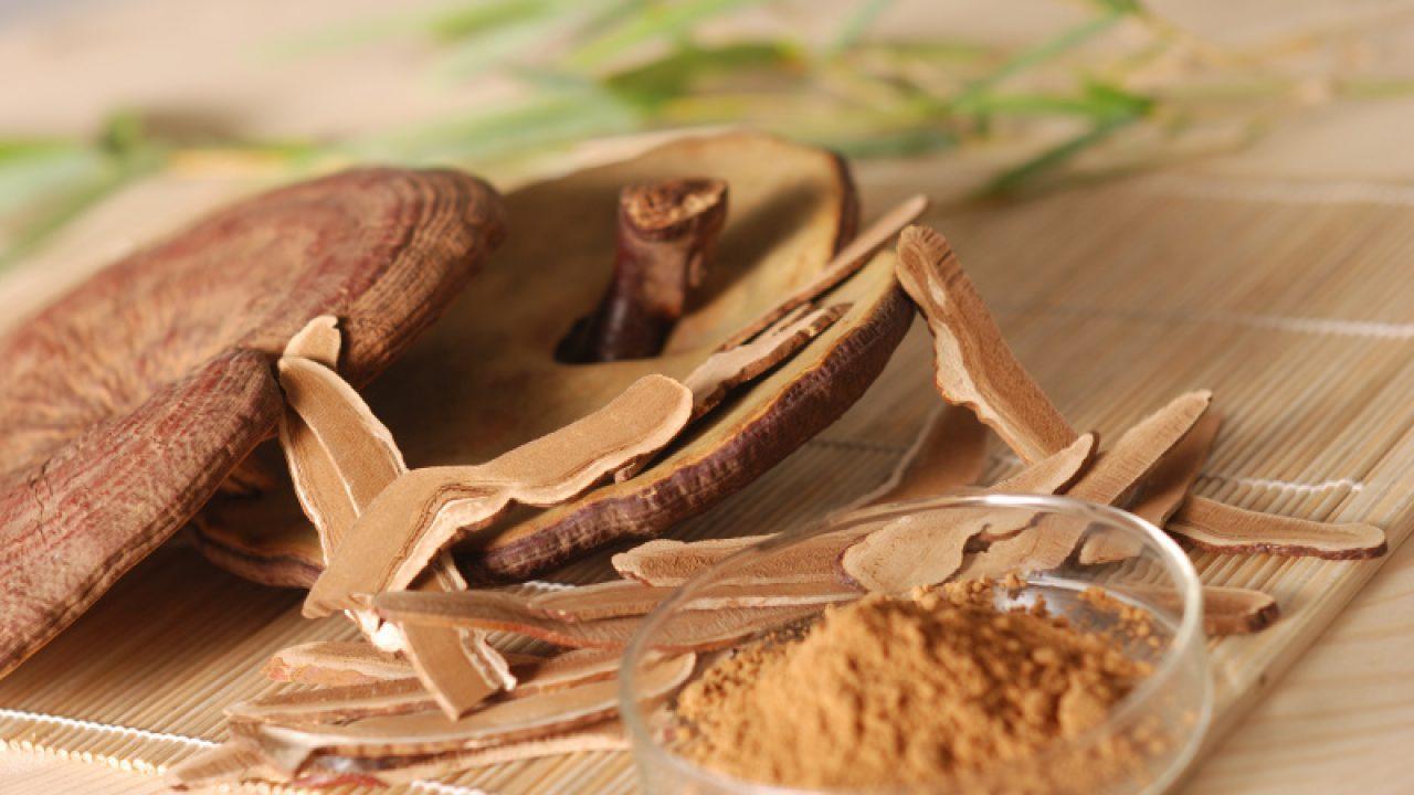 Sấy khô nấm linh chi vẫn đảm bảo dược hiệu tốt nhất