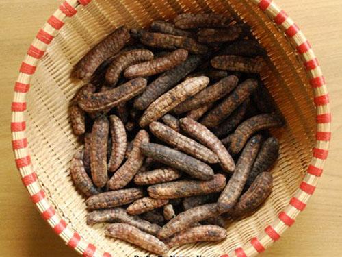 Máy sấy chuối hột rừng-3 lưu ý tiết kiệm sấy