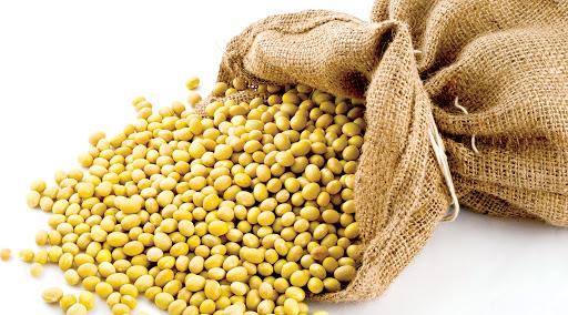 Hạt dinh dưỡng sấy khô có lợi cho sức khoẻ